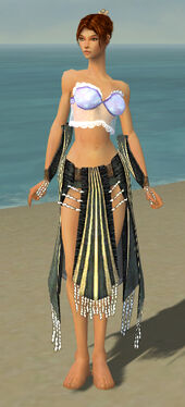 Elementalist Sunspear Armor F gray arms legs front