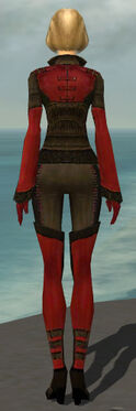 Mesmer Istani Armor F dyed back