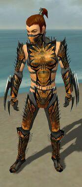 Assassin Elite Exotic Armor M gray front