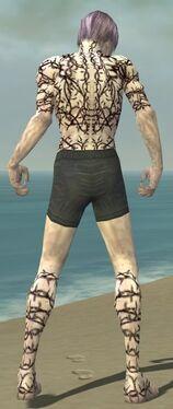 Necromancer Elite Scar Pattern Armor M gray chest feet back