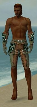 Ranger Drakescale Armor M gray arms legs front