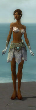 Paragon Monument Armor F gray arms legs front