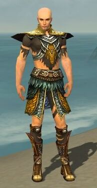 Ritualist Deldrimor Armor M dyed front
