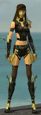 Assassin Elite Luxon Armor F dyed front