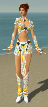 Elementalist Elite Iceforged Armor F dyed front