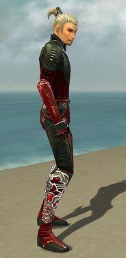 Assassin Deldrimor Armor M dyed side