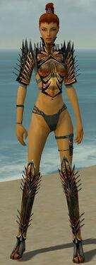 Assassin Elite Exotic Armor F gray chest feet front