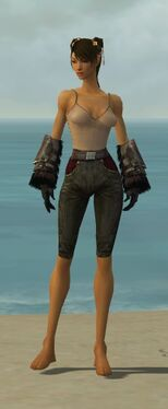 Ranger Norn Armor F gray arms legs front