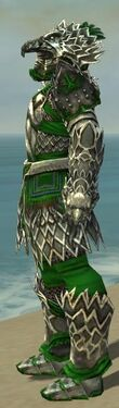 Warrior Silver Eagle Armor M dyed side