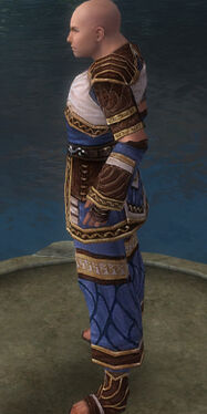 Monk Elite Canthan Armor M dyed side