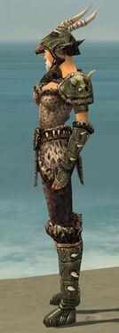Warrior Elite Charr Hide Armor F gray side