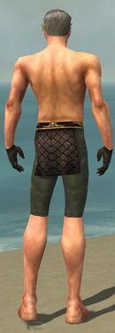 Mesmer Vabbian Armor M gray arms legs back