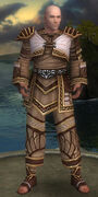 Monk Elite Canthan Armor M gray front