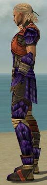 Ranger Elite Drakescale Armor M dyed side