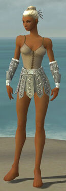 Warrior Ascalon Armor F gray arms legs front