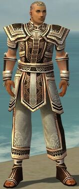 Monk Monument Armor M gray front