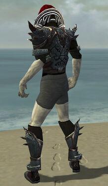 Necromancer Asuran Armor M gray chest feet back