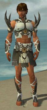 Paragon Elite Sunspear Armor M gray front