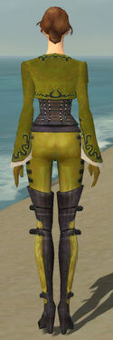 Mesmer Rogue Armor F dyed back