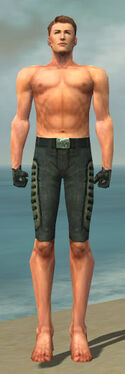 Mesmer Rogue Armor M gray arms legs front