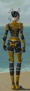Necromancer Tyrian Armor F dyed back