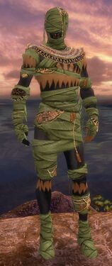 Ritualist Ancient Armor M dyed front