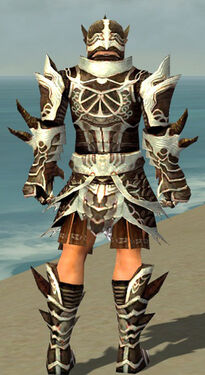 Warrior Monument Armor M dyed back