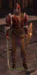 Ascalon Watchman