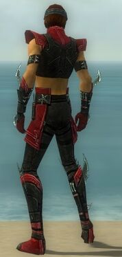 Assassin Luxon Armor M dyed back