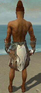 Paragon Norn Armor M gray arms legs back