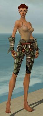 Ranger Elite Drakescale Armor F gray arms legs front