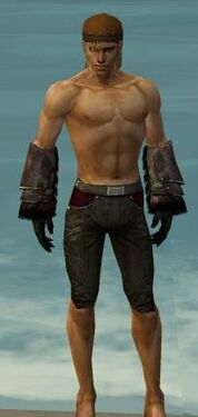 Ranger Norn Armor M gray arms legs front