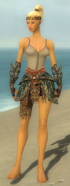 Warrior Luxon Armor F gray arms legs front