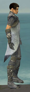 Elementalist Stoneforged Armor M gray side
