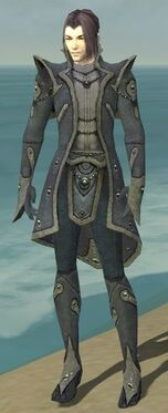 Elementalist Tyrian Armor M gray front