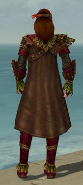 Ranger Druid Armor M dyed back