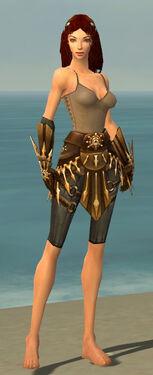 Ranger Elite Sunspear Armor F gray arms legs front