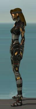 Assassin Elite Kurzick Armor F gray left