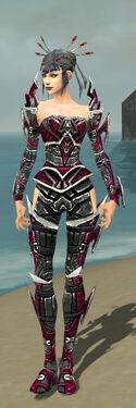 Necromancer Elite Profane Armor F dyed front