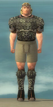 Warrior Canthan Armor M gray chest feet front