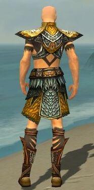 Ritualist Deldrimor Armor M dyed back