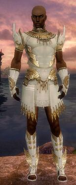 Paragon Vabbian Armor M dyed front