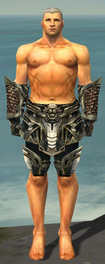 Warrior Elite Kurzick Armor M gray arms legs front