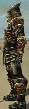 Warrior Kurzick Armor M gray side