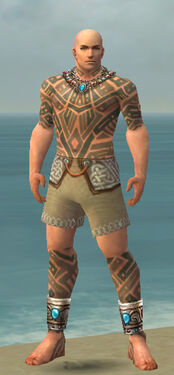 Monk Labyrinthine Armor M gray chest feet front