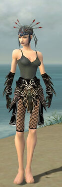 Necromancer Elite Luxon Armor F gray arms legs front