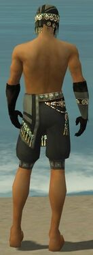 Ritualist Elite Luxon Armor M gray arms legs back