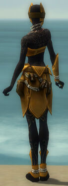 Ritualist Kurzick Armor F dyed back