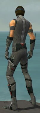Assassin Canthan Armor M gray back