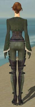 Mesmer Rogue Armor F gray back